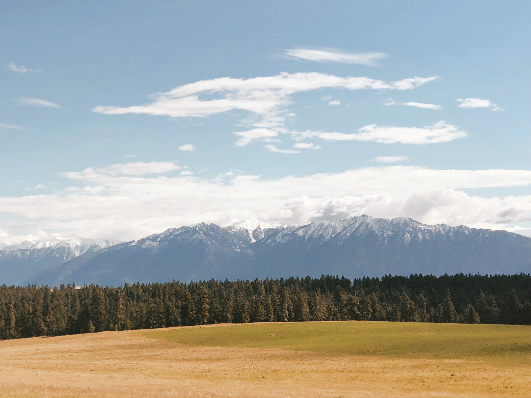 Exploring Cranbrook B.C. this summer